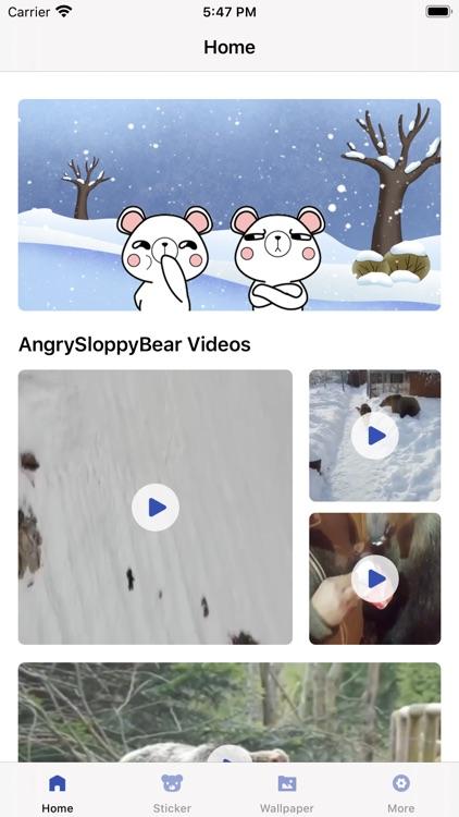 Angry Sloppy Bear