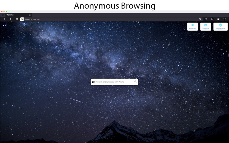 Wave Browser скриншот программы 1