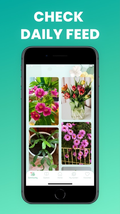 Plant identification and care screenshot-5