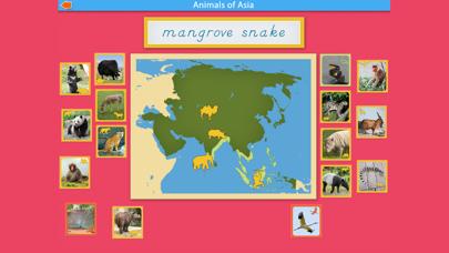 Montessori - Animals of Asia screenshot 6