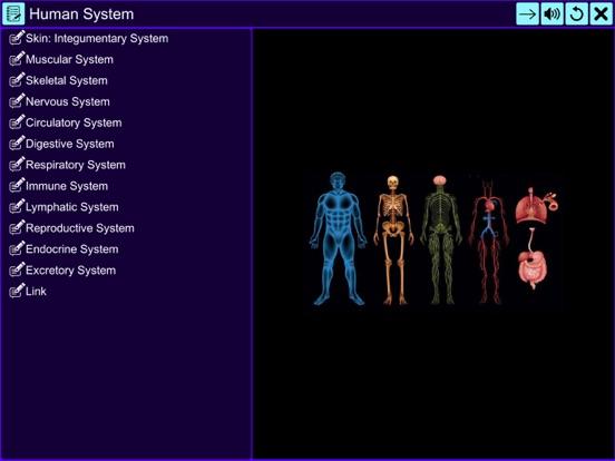 The Amazing Human System screenshot 7