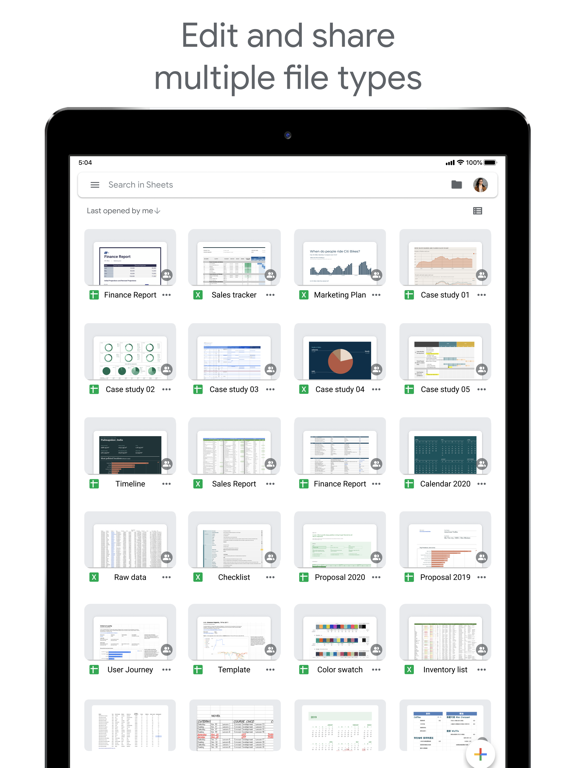 Google Sheets iPad captures décran