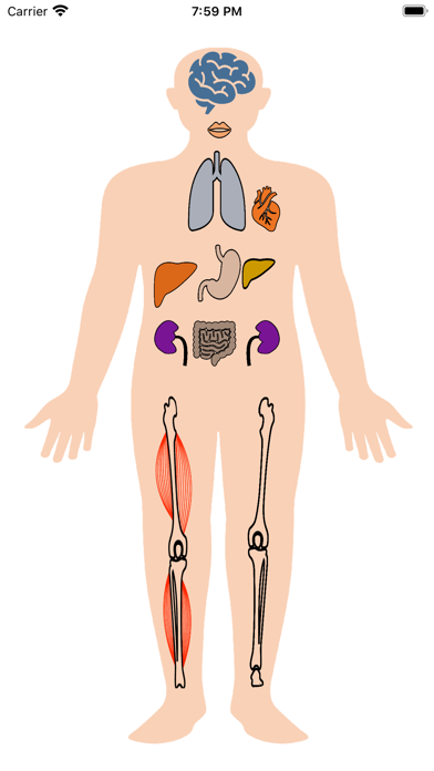 Скриншот №1 к Metabolic Organs