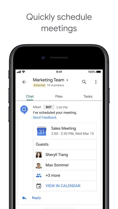 Google Chat Screenshot