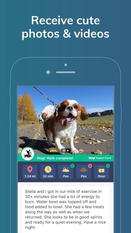 Wag! - Dog Walkers & Sitters screenshot-5
