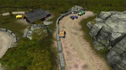 Go Rally screenshot 4