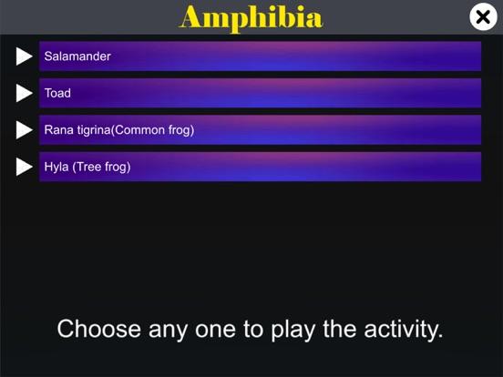 Diversity in Living: Amphibia screenshot 11