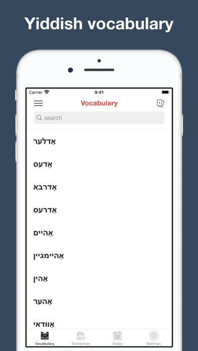 Yiddish vocabulary & sentences screenshot 1