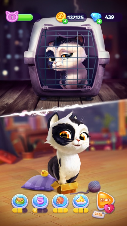 My Cat! – Virtual Pet Games screenshot-4