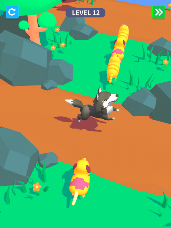 iPad Image of Animal Games 3D