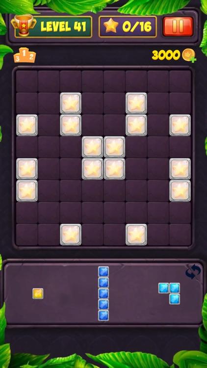 Block Puzzle Level screenshot-8