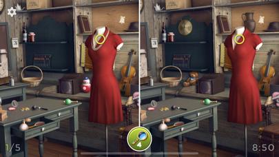 Hidden Differences - Spot Them screenshot 2