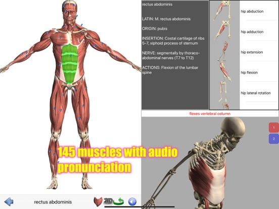 Visual Anatomy Screenshots