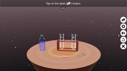 Displacement Reaction screenshot 2