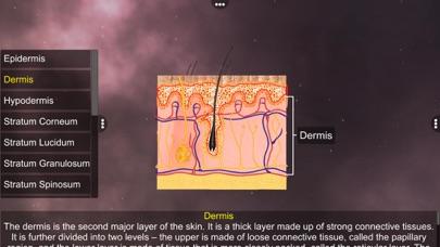 Skin: Integumentary System screenshot 3