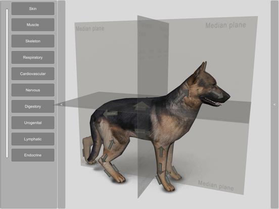 3D Canine Anatomyのおすすめ画像1