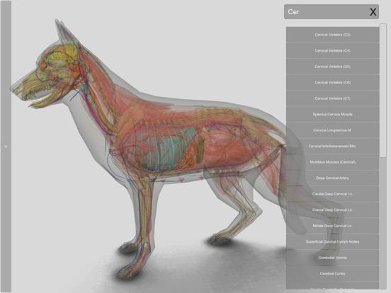 3D Canine Anatomyのおすすめ画像7
