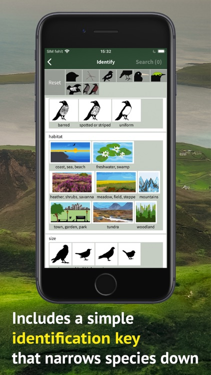All Birds Scotland Photo Guide screenshot-8