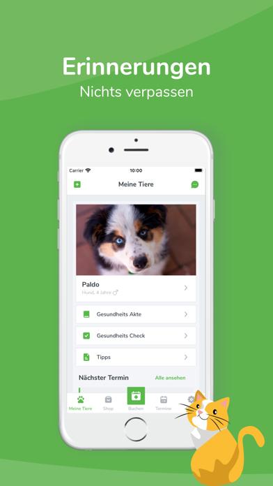 messages.download felmo - Mobiler Tierarzt software