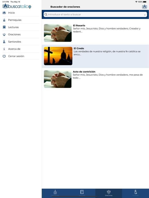 Ipad Screen Shot Buscatolico 1