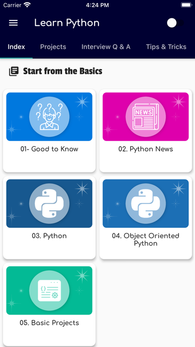 Learn Python Programming Guide Screenshot
