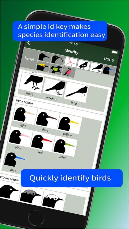 All Birds Trinidad and Tobago screenshot-9