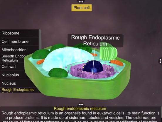 Prokaryotic & Eukaryotic cell screenshot 17