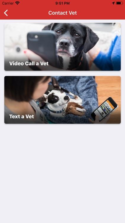 Pet Vet Hotline screenshot-3