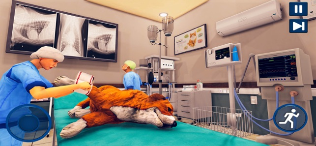 Pet Vet Hospital - Doctor Care