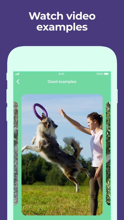 Dog Training & Clicker by Dogo screenshot-5