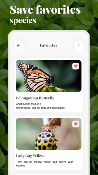 虫の名前がわかるアプリ-ものすごい図鑑昆虫判定虫図鑑のおすすめ画像4