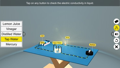 Electric Conduction in Liquids screenshot 8