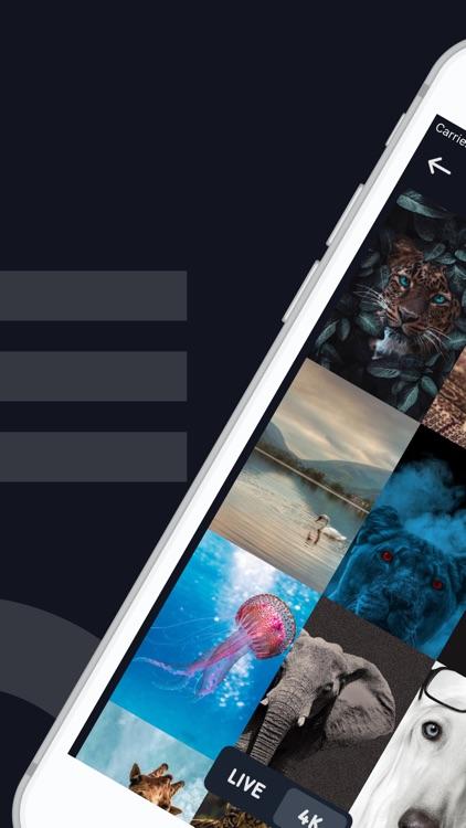 Live Wallpaper & 4K Background screenshot-3