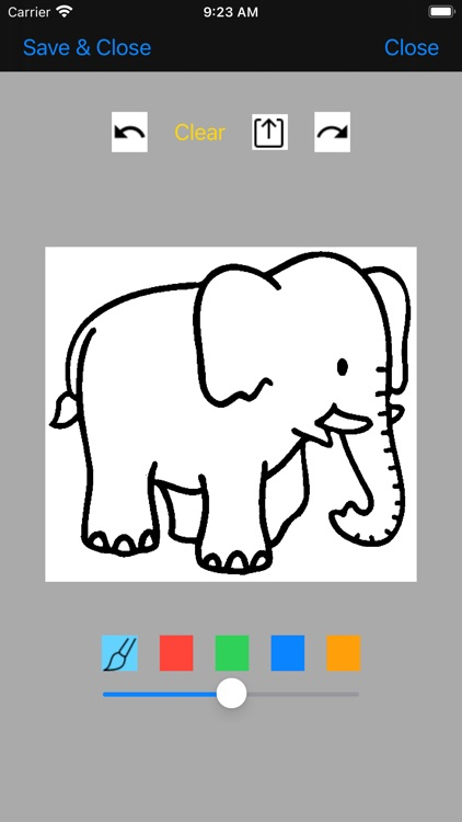 Coloring Book Animal
