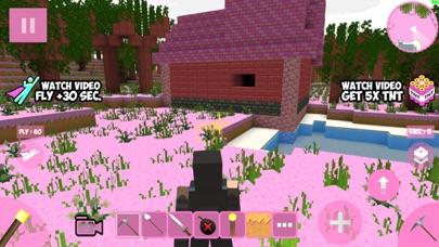 Candy Craft! screenshot 4