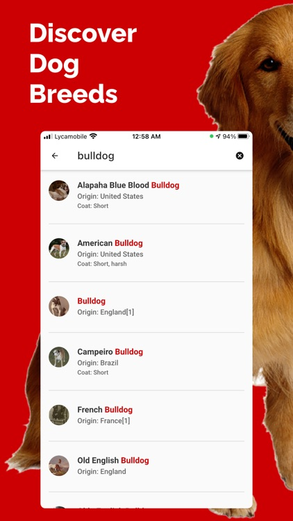 Dog Breed Identifier - Doge screenshot-4