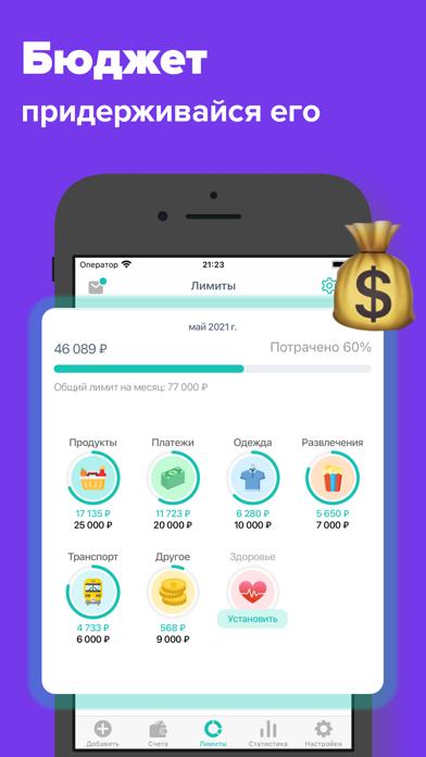 Flow money - анализ финансовСкриншоты 3