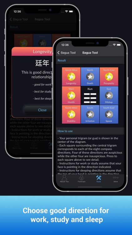 CHoroscopes Chinese Horoscopes screenshot-3