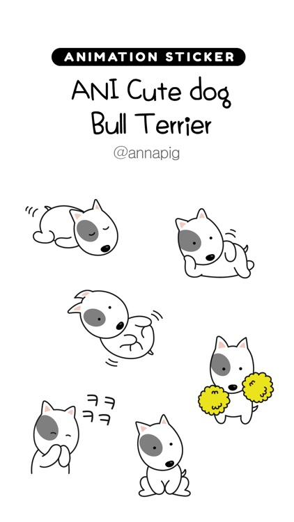 ANI Cute dog Bull Terrier