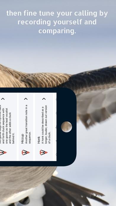 Goose Tech screenshot 3