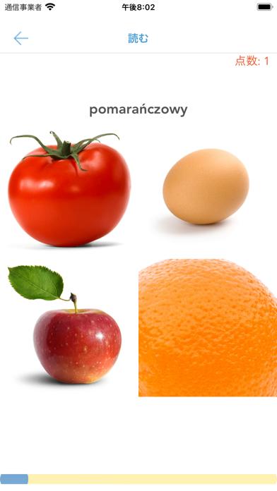 初心者と子供向けポーランド語紹介画像4