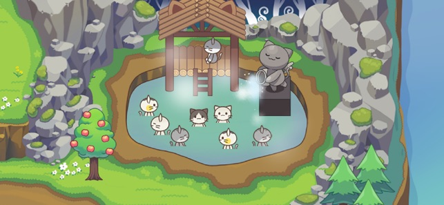 Rừng mèo(Cat Forest)