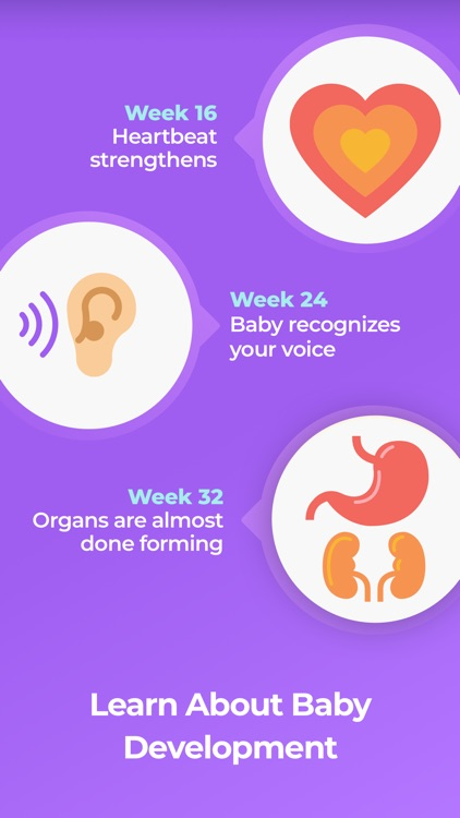 Pregnancy & Baby Tracker WTE screenshot-3