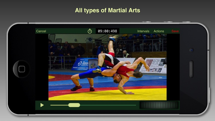 Martial Arts Video Analysis