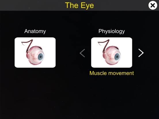 The Eye (Anatomy & Physiology) screenshot 10