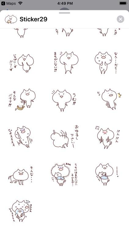 lax cat