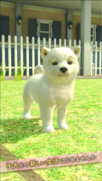 最新スマホゲームのwithMyDOG-犬とくらそう-が配信開始!