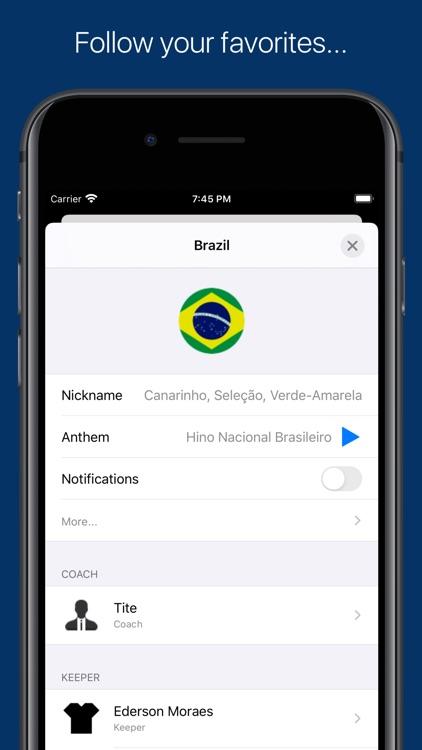 Copa America - 2020 screenshot-3