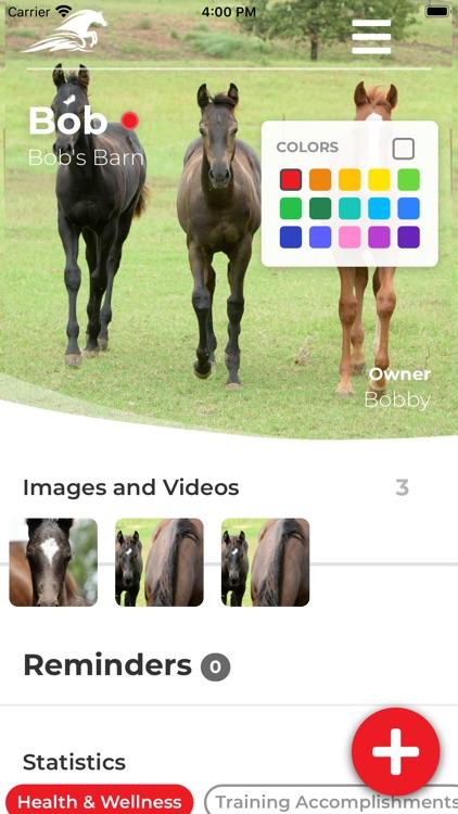 Ride Up - Equine Journal screenshot-3