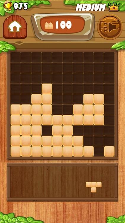 Block Wood Classic Puzzle